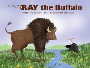 The-Story-of-Ray-The-Buffalo-300x228
